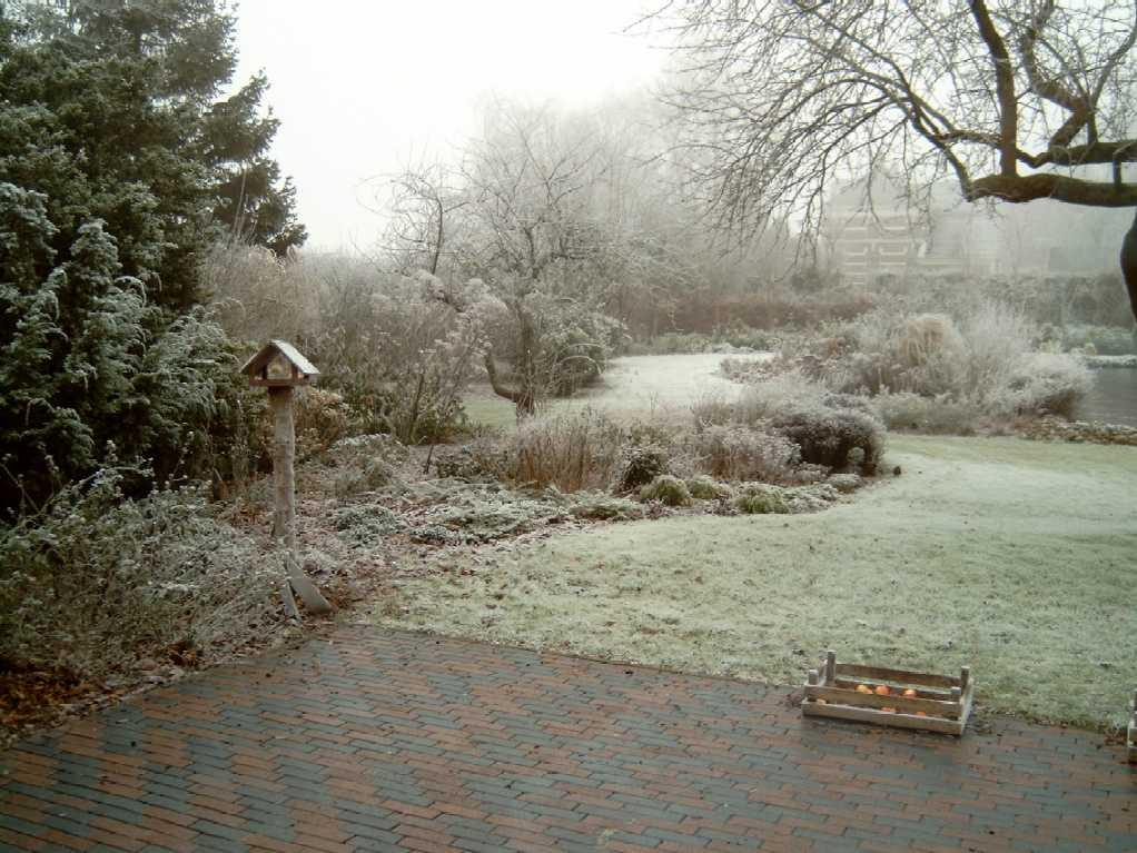 Fotot5 - Foto van het terras ...